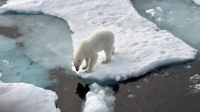 Klimagipfel der Vereinten Nationen