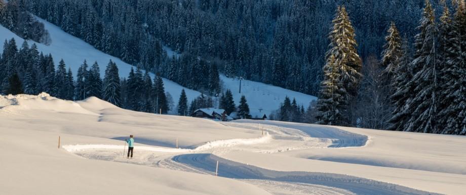20190115 Balderschwang versinkt im Schnee Balderschwang, Germany, 15.1.2019, NEWS, , Balderschwang versinkt im Schnee -