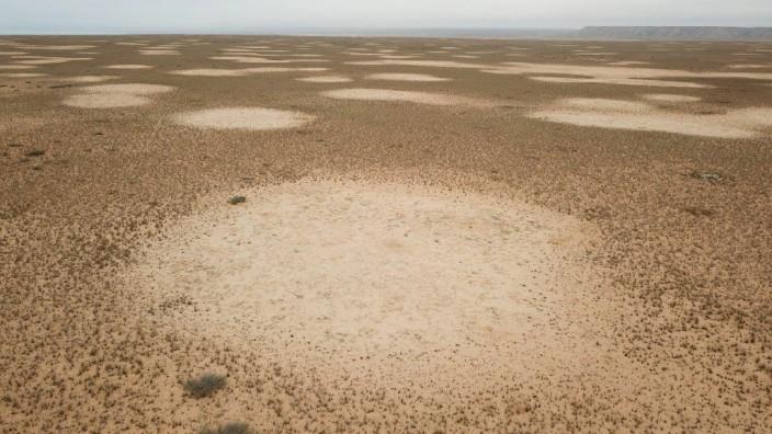 Feenkreise aus der Luft, aufgenommen über dem Küstenplateau südli; Feenkreise