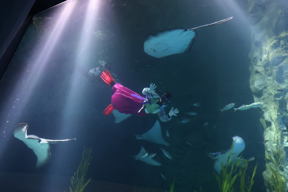 Divers Swim In Hanbok Costumes To Celebrate New Year