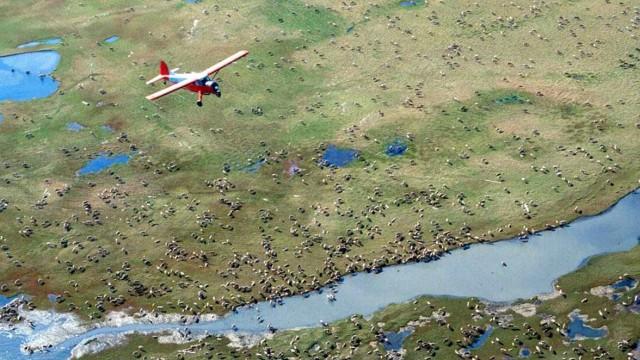 Streit um Pachtverträge in US-Naturschutzgebiet