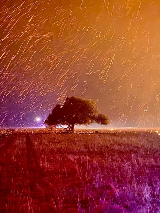 Sparks from bushfire descend over a tree in Gingin, Western Australia
