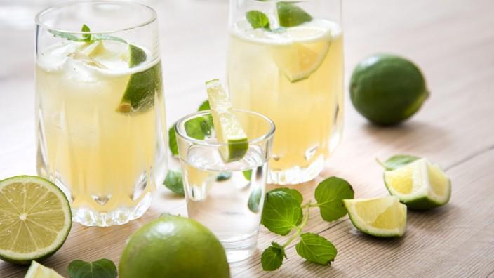 Von der Feinheit der Agave: Tequila ist mehr als ein Partygetränk