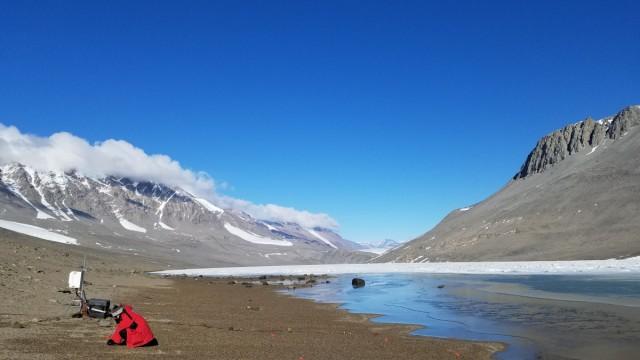 Klimawandel könnte Antarktis grüner machen und Arten auslöschen