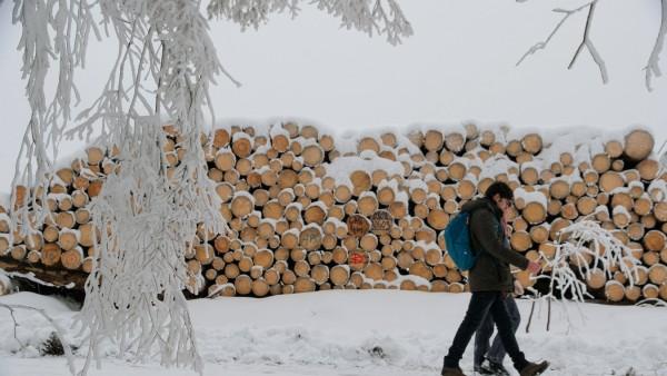 Schnee im Oberharz Im Ortsteil Elbingerode der Stadt Oberharz spazieren am 06.01.2021 Ausflügler auf einen Wanderweg. Ve