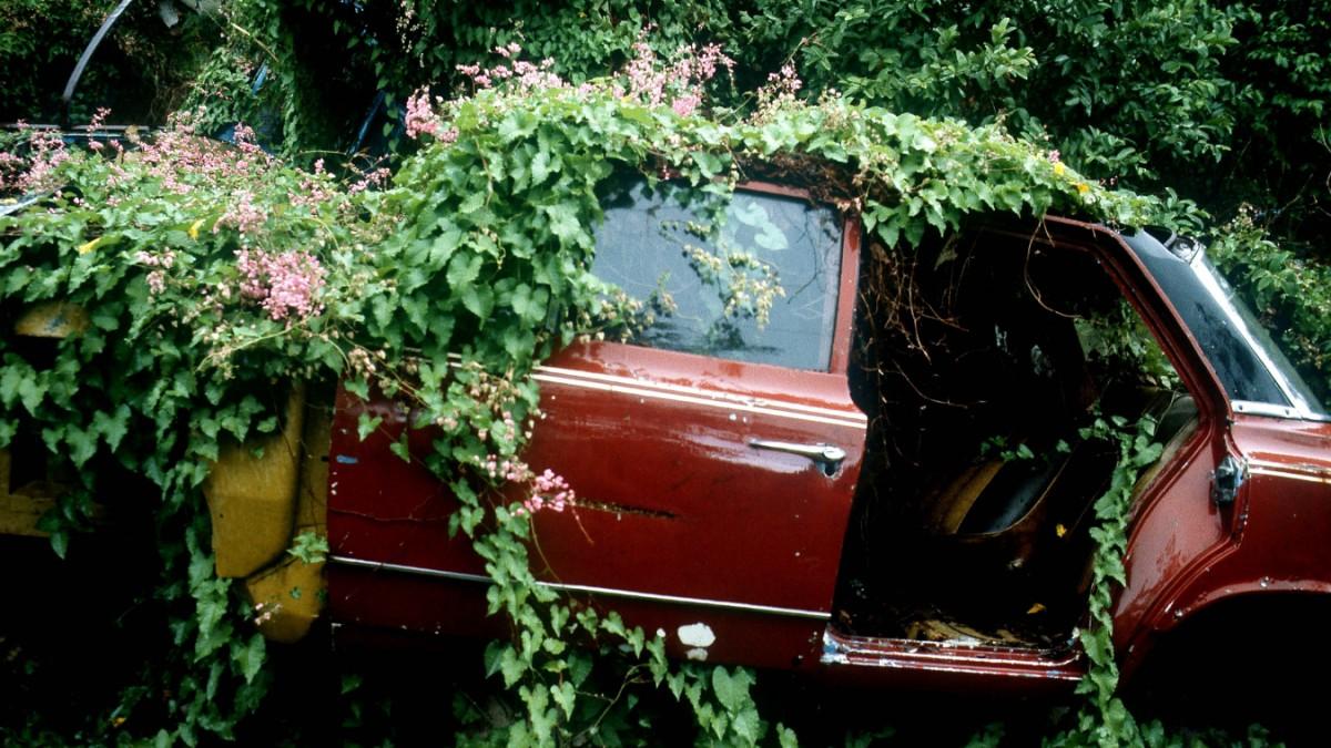 Politik und Autoindustrie: Wenn Liebe rostet