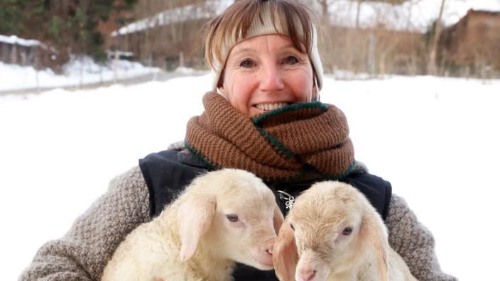 Kinderstube auf der Schafweide; Auf Garatshausener Weide von Imke Schmid