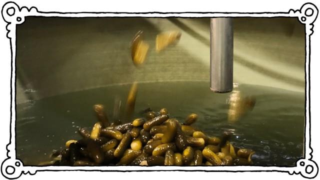 Develey Gurkenwasser gegen Eisglätte