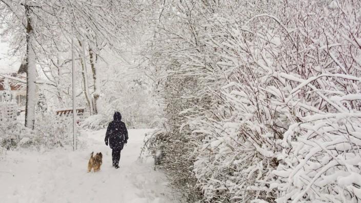 Weather feature: Onset of winter with 50cm of fresh snow, Wintereinbruch mit 50cm Neuschnee in Marktoberdorf, Bavaria,