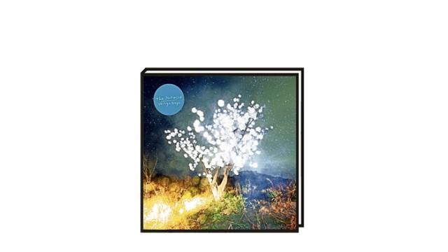 """Alben der Woche: Als schleiche man durch eine leer stehende Holzhütte im Wald: """"Vertigo Days"""""""