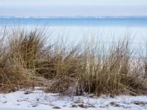 Strandgras an der Osrtseeküste, Niendorf/Ostsee, Timmendorfer Strand, Lübecker Bucht, Schleswig-Holstein, Deutschland
