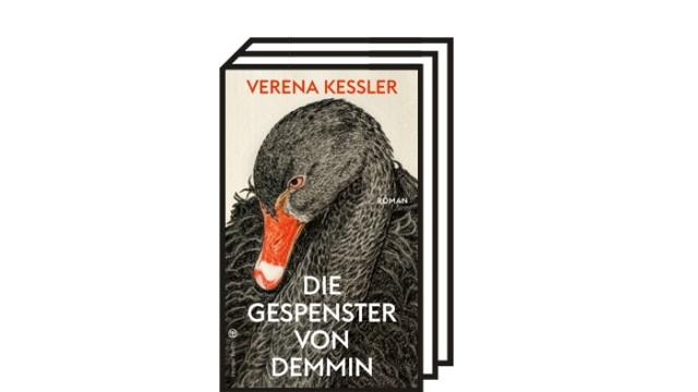 """Verena Keßlers Debüt """"Die Gespenster von Demmin"""": Verena Kessler: Die Gespenster von Demmin. Roman. Hanser Berlin, 2020. 239 Seiten, 22 Euro."""