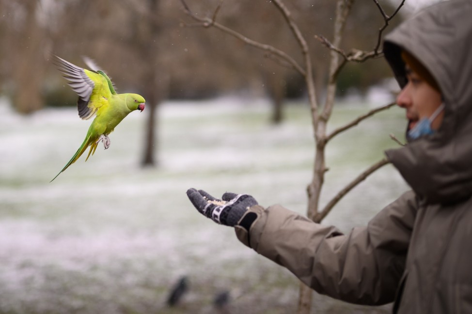 BESTPIX - Big Freeze Brings Snow, Ice and Flooding To The UK