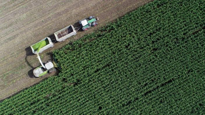 EU-Staaten einigen sich auf Agrarreform