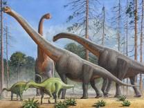 Paläontologie: Zurück nach Afrika