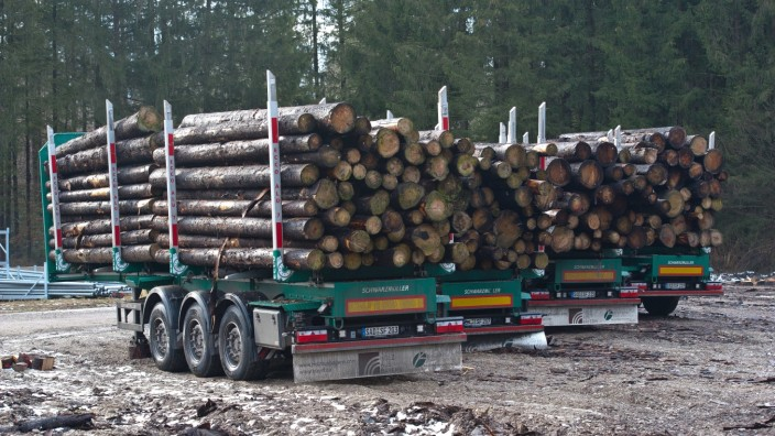 Ebersberger Forst: Ein beladener Holzlaster im Frühjahr 2021 im Ebersberger Forst unweit von Forstinning.
