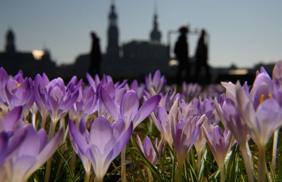 Fin de semana de primavera - Dresde