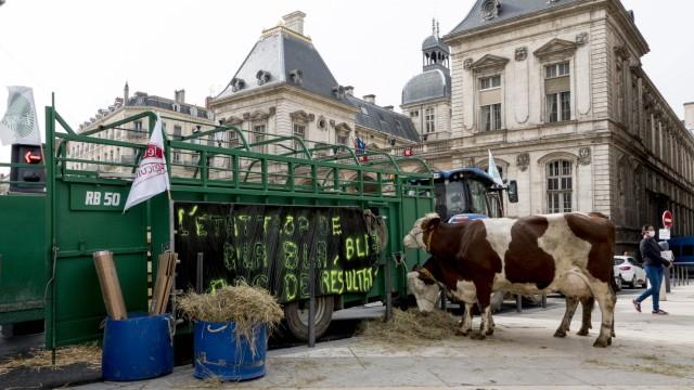 Manifestation des agriculteurs du Rhone contre la decision de la Ville de Lyon de supprimer la viande des cantines scol