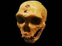 Menschheitsgeschichte: Konnten Neandertaler sprechen?
