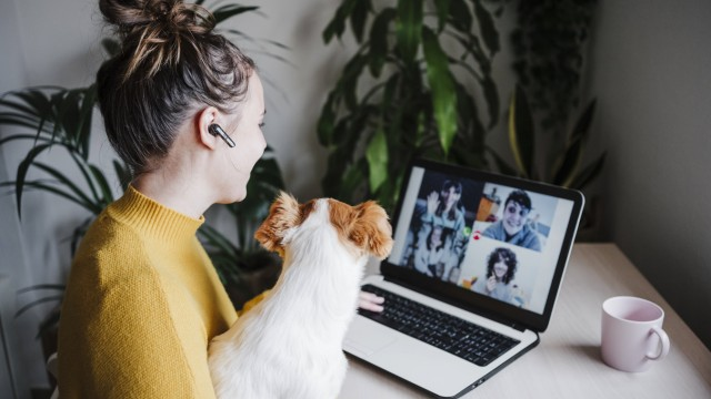 Woman talking with friends on video conference over digital tablet while sitting with pet at home model released Symbolf