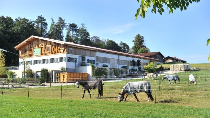 Berg: Pferdebetrieb Dürrberghof