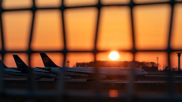 Flugzeuge der Lufthansa auf dem Frankfurter Flughafen