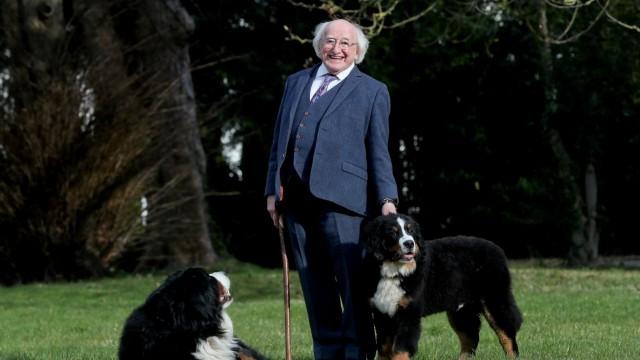 Irischer Präsident zeigt seinen neuen Hund