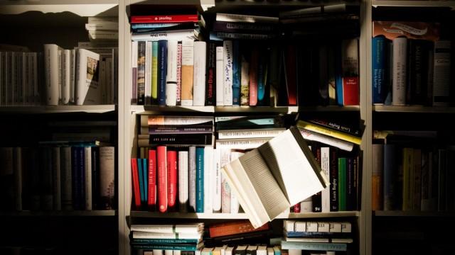 Literaturbeilage