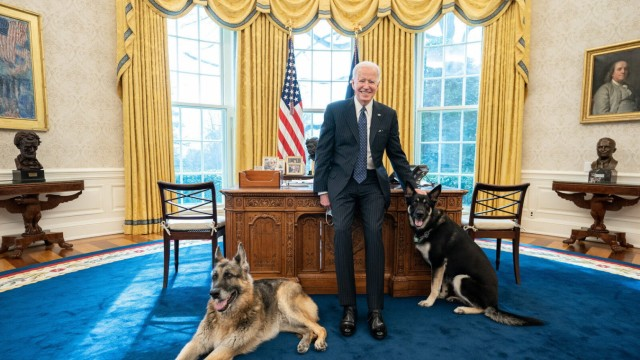 February 9, 2021 - Washington, D.C., USA - President Joe Biden poses with the Biden family dogs Champ and Major Tuesday,