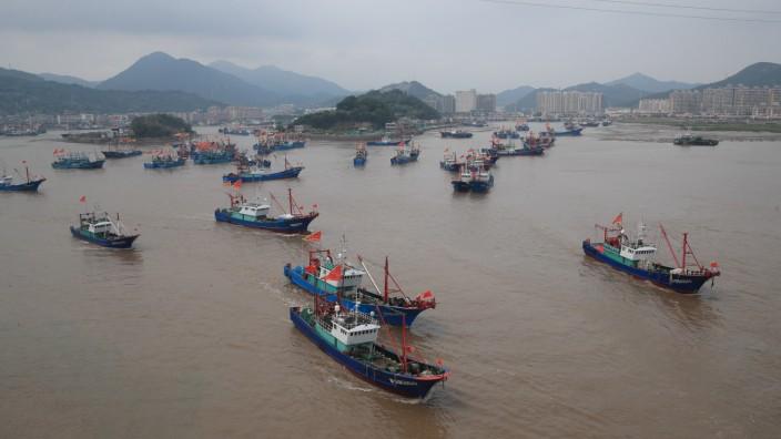 Mehr Meeresschutzgebiete erhöhen auch Fischerei-Erträge