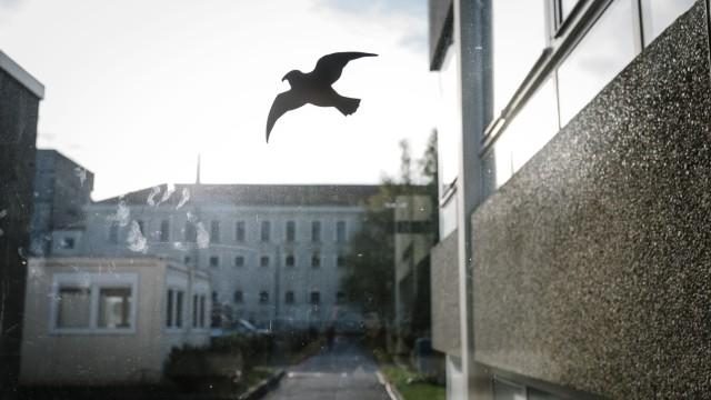 Justizvollzugsanstalt Stadlheim in München, 2019
