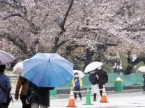 Japan: Frühlingsgefühle