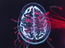 Neuroscience, Fibre optics carrying data around the brain property released PUBLICATIONxINxGERxSUIxAUTxHUNxONLY ABRF004