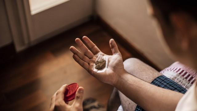 Close up of the hands of a man with marijuana model released Symbolfoto PUBLICATIONxINxGERxSUIxAUTx