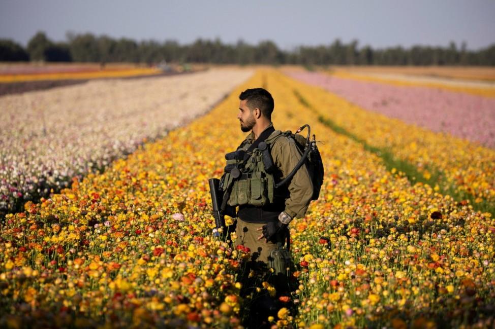An Israeli soldier walks in a field of buttercup flowers near Kibbutz Nir Yitzhak in southern Israel, just outside the Gaza Strip