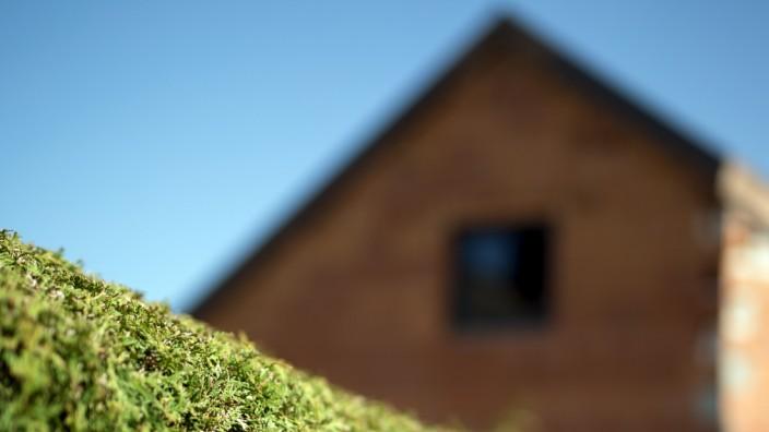 Blick über eine Hecke in Moosburg, 2020