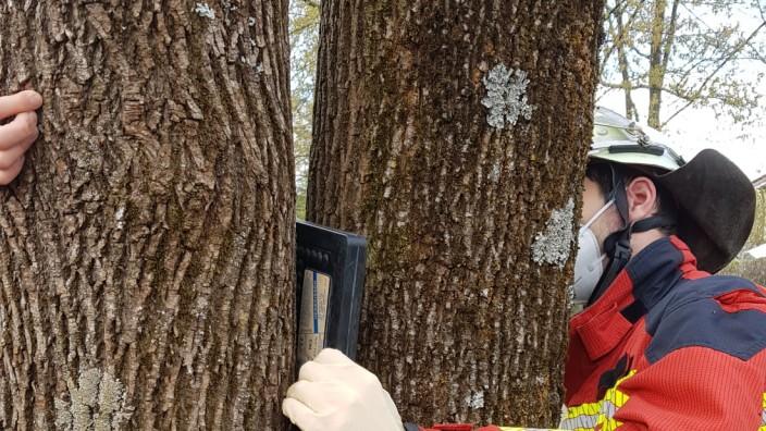 Kind im Baum eingeklemmt FW Germering