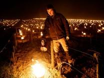 Frostschäden: Feuer frei!