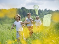 Carefree friends with model airplane and butterfly nets running on grassy land in forest