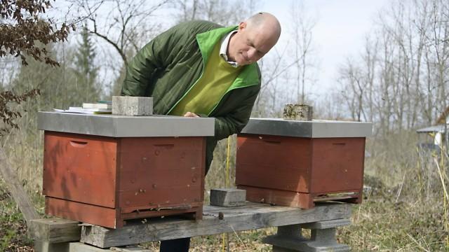 Artenschutz: Oliver Seth besitzt vier Bienenstöcke und einen eigenen Wald, in dem er bienenfreundliche Bäume hält.