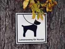 Leinenzwang für Hunde