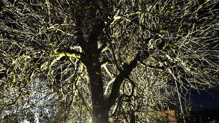 Feldafing Abendsbeleuchtung