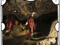 """SZ-Kolumne """"Bester Dinge"""": Höhlenmenschenaffen"""