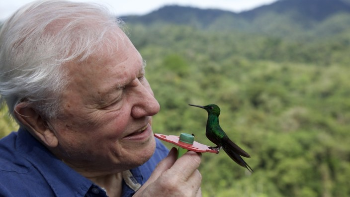 Life in Color mit David Attenborough