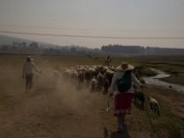 Klimawandel: Schwerste Dürre seit 30 Jahren trifft Mexiko-Stadt