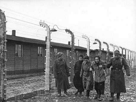 kz auschwitz konzentrationslager reuters