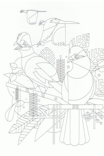 Dieter Braun: Outlines
