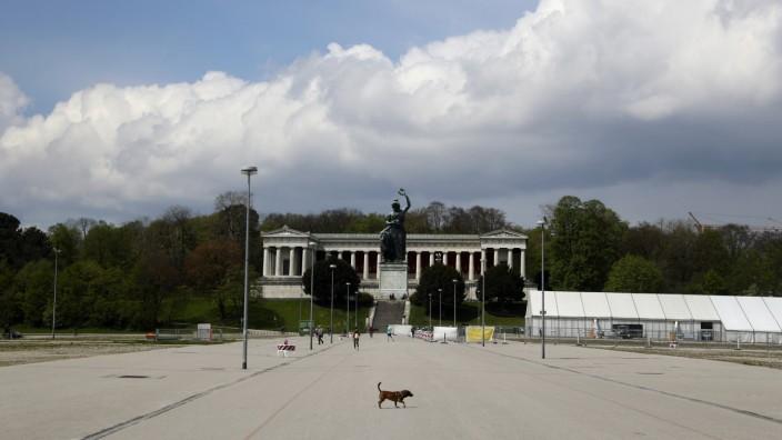 Die Theresienwiese bietet viel Platz - warum nicht auch für ein Protestcamp?