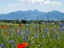 Deutschlands Bäder:Wo Kurpark auf Thermalbad trifft