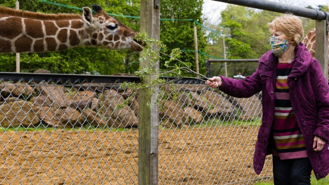 Corona-Impfpatientin trifft nach ihr benannte Giraffe
